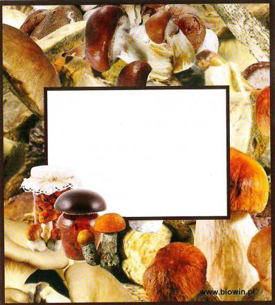 Самоклеящиеся этикетки для домашних заготовок 93/84 мм 20 шт. (грибы)