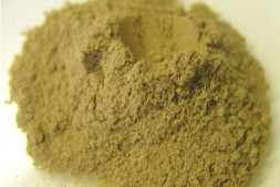 Фермент Амилосубтилин Г3х (А – 1500 ед./г) 0,250 кг